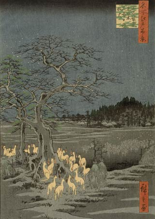 kitsune-bi - foxes and foxfire